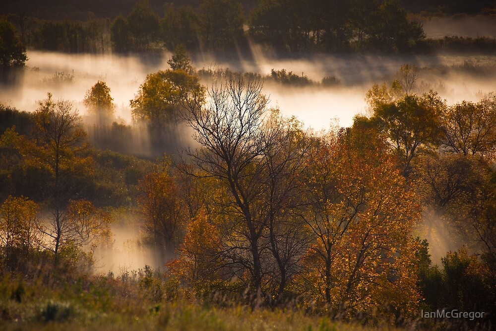 Rays Through The Autumn Valley by IanMcGregor