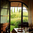 Doors and Windows of Italy by Barbara  Brown