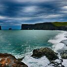 Dyrholaey Iceland by James  Luccarda