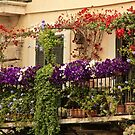 Balcony in Rome by Barbara  Brown