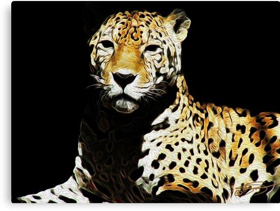 Cheetah Cheetah by KandisGphotos