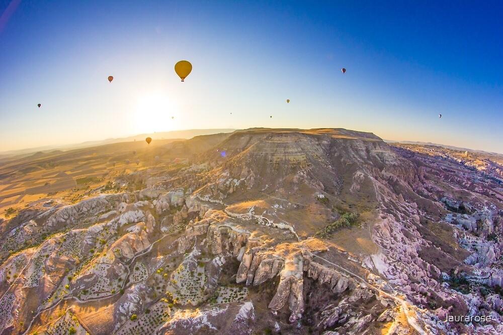 Cappadocia Hot Air Balloon IV by laurarose