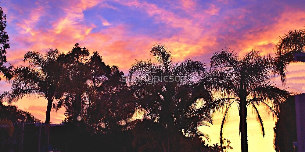 Tropical Sunrise Silhouette. PhotoArt, Gifts, and Apparel. by sunnypicsoz