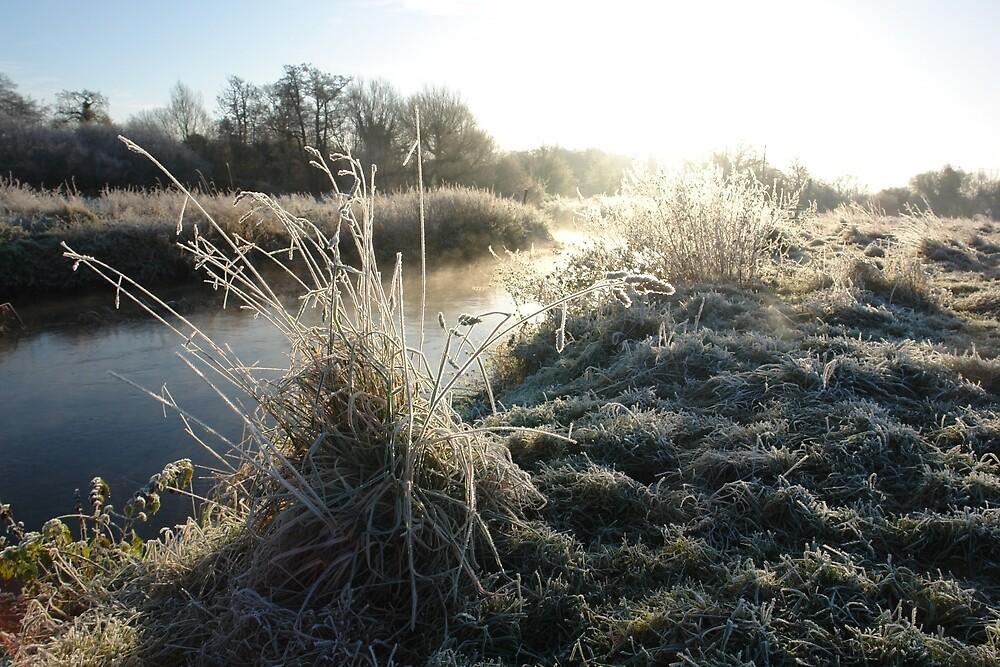Frozen Land, Flowing Water by ArtByRosalind