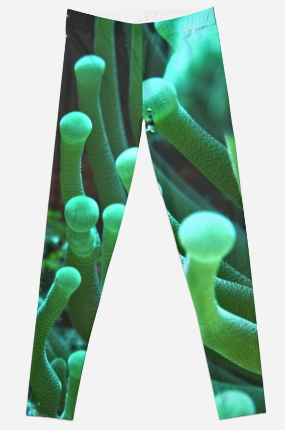 Green Sea Anemone Macro by Amy McDaniel