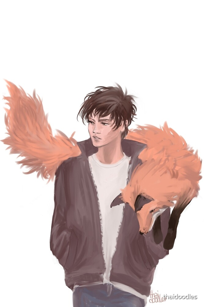 Neil Josten - Foxes with Foxes by thaidoodles