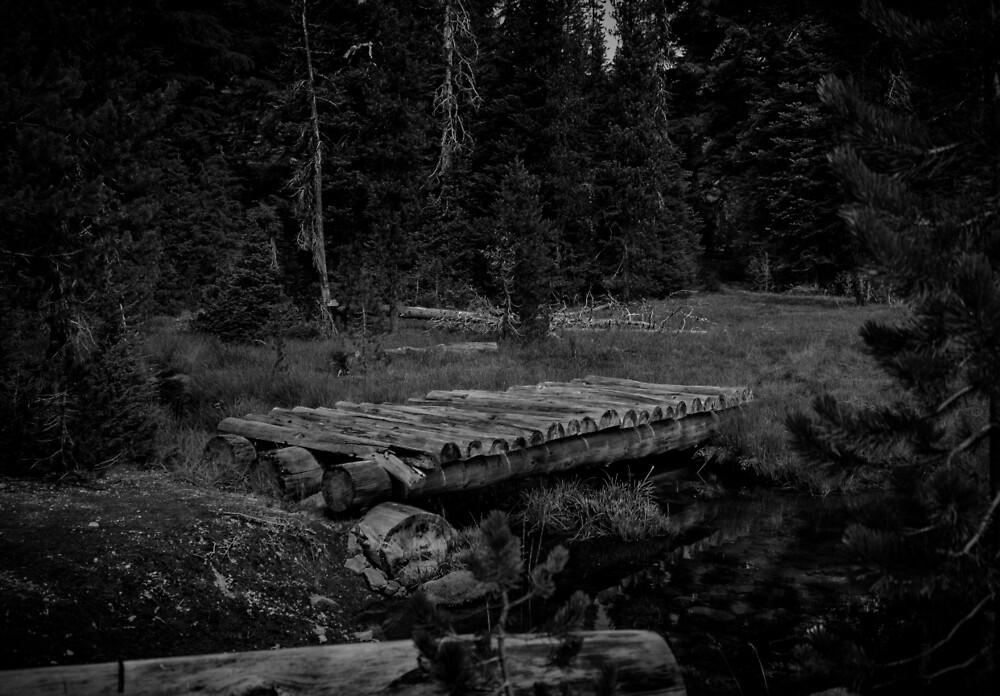 Bridge Noir by thehikingviking