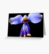 Stripe - Orchid Alien Discovery Greeting Card