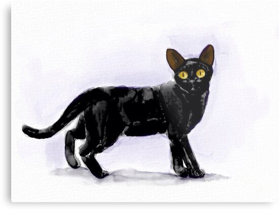 Black Cat-Scroll down to view more of my work by KaylasArt