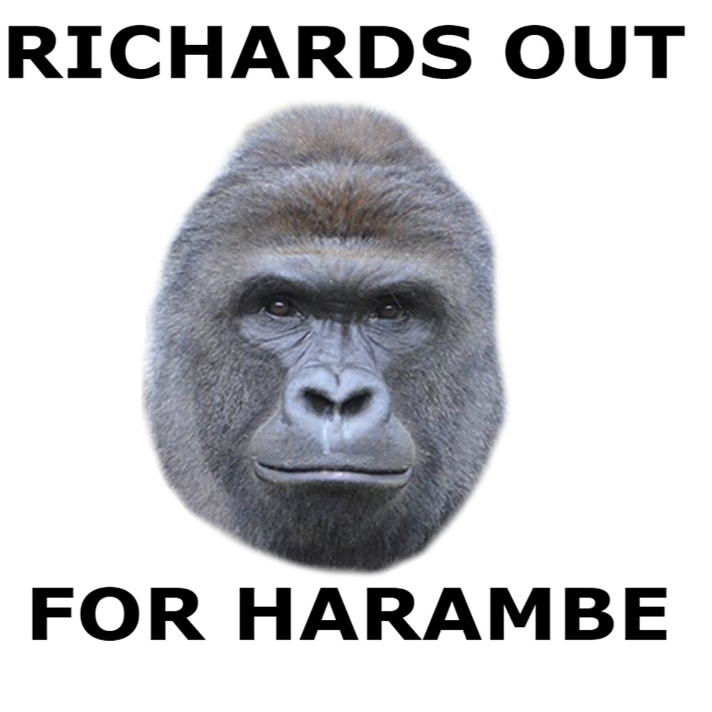 Richards out for Harambe by sethitler