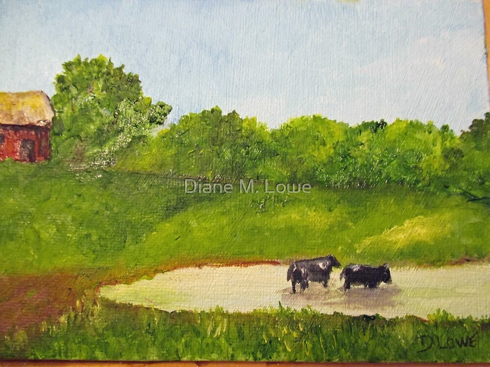 Cows in a Pond by Diane M. Lowe