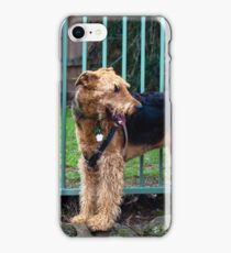 Airedale IXL iPhone Case/Skin