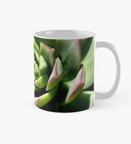 Shadows of Cactus Mug