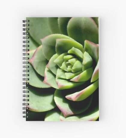 Shadows of Cactus Spiral Notebook