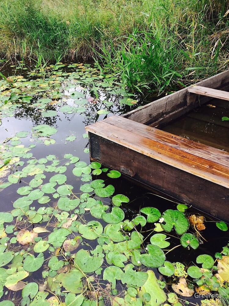Nostalgic pond by Greersita