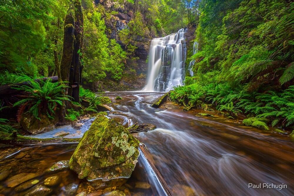 Tarkine Falls, Tasmania by Paul Pichugin