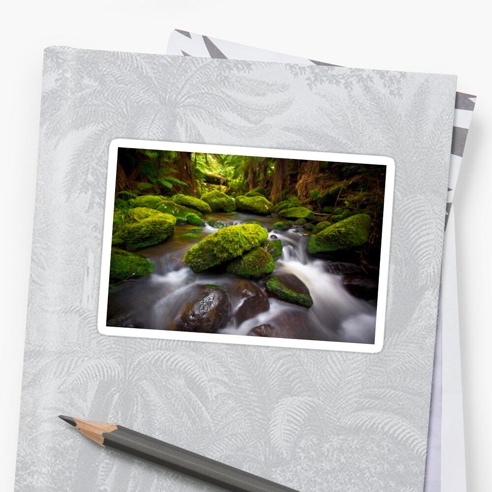 Otways Rainforest Sticker