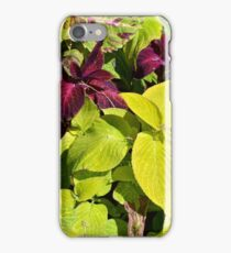 Colorful green leaves pattern iPhone Case/Skin