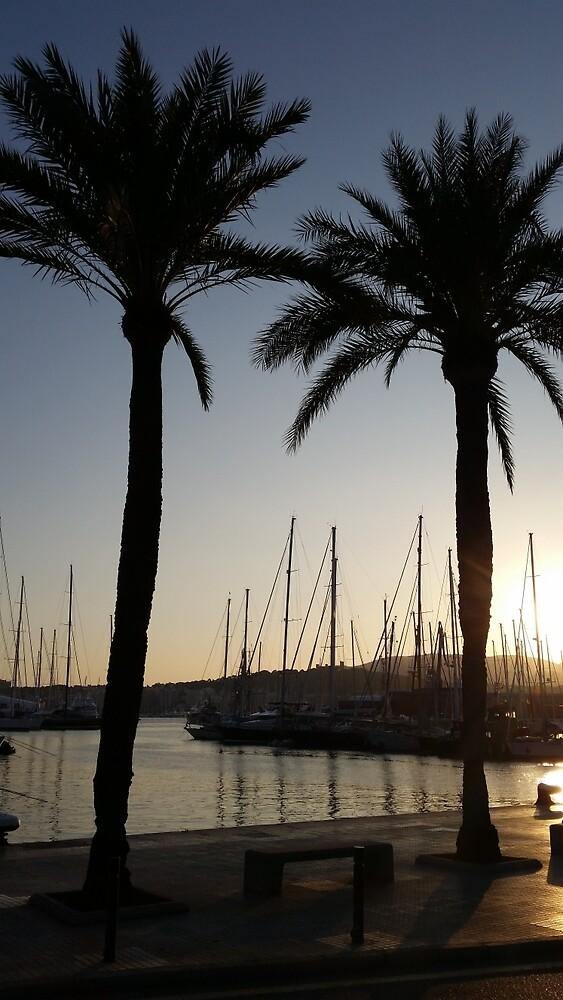 Sun setting over Palma, Mallorca by Suzanne Lewis