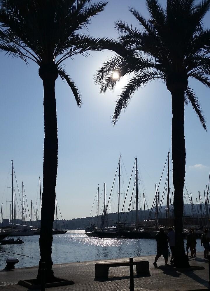 Palma, Mallorca by Suzanne Lewis