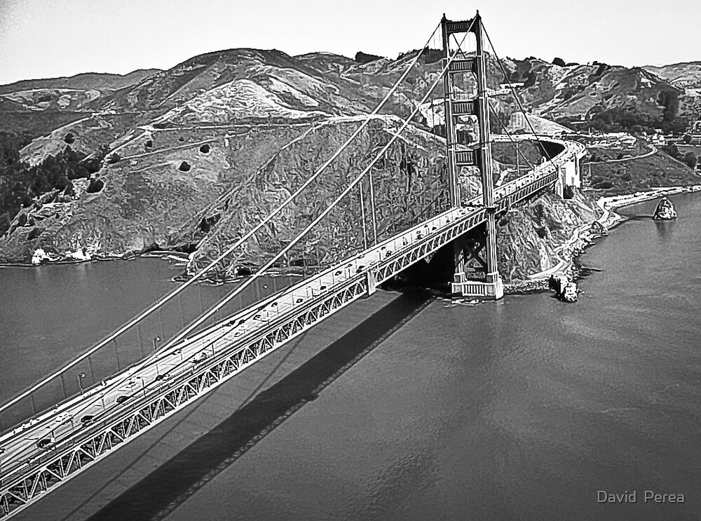 Aerial Golden Gate SF Black and White  by David  Perea