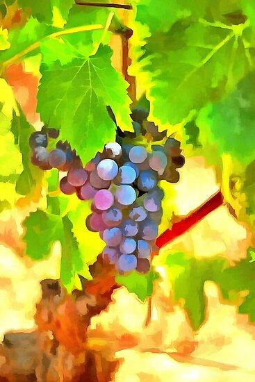 Bunch of Grapes by jean-louis bouzou