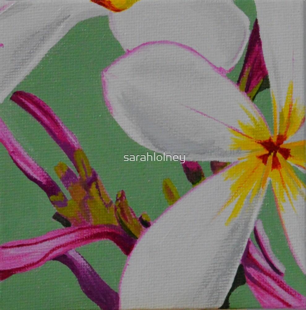feeling frangipani by sarahlolney