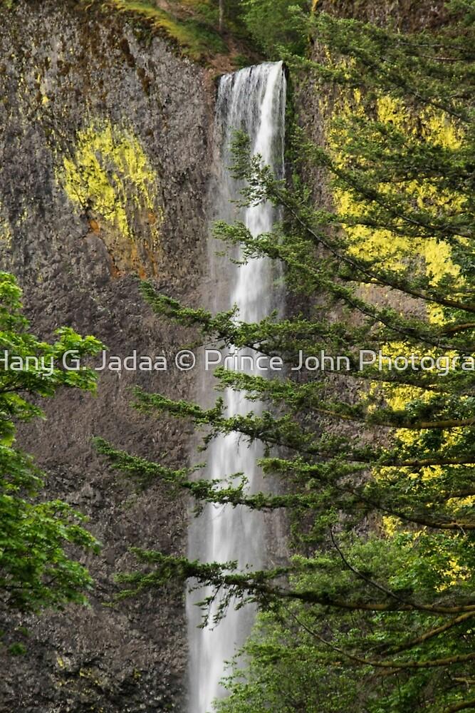 Latourell Falls - 1 ©  by © Hany G. Jadaa © Prince John Photography