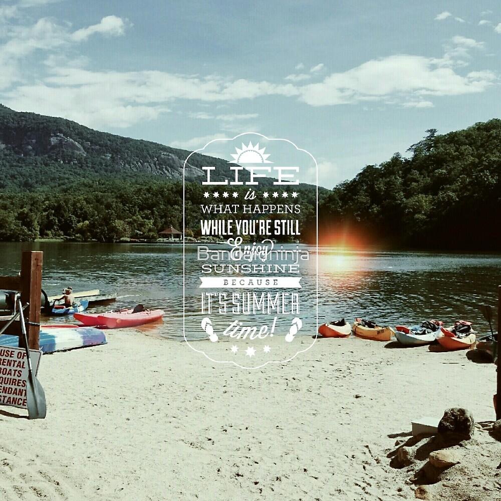 lake life by Bandaidninja