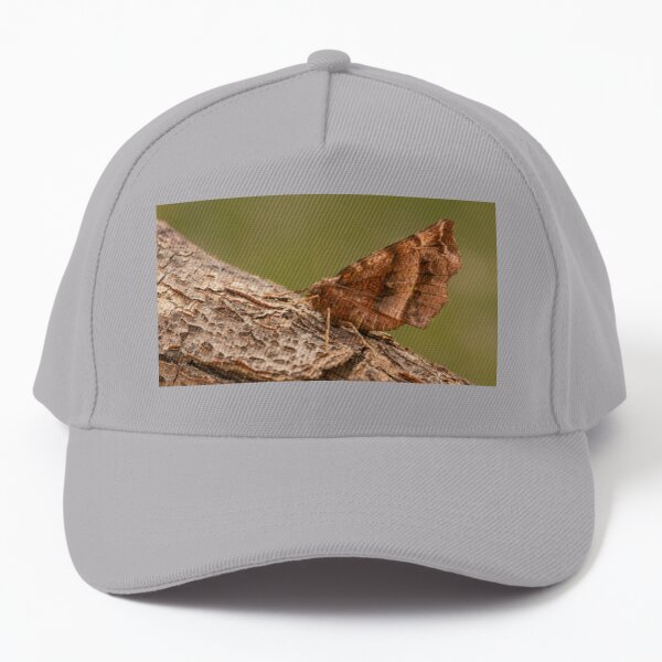 Early Thorn Baseball Cap
