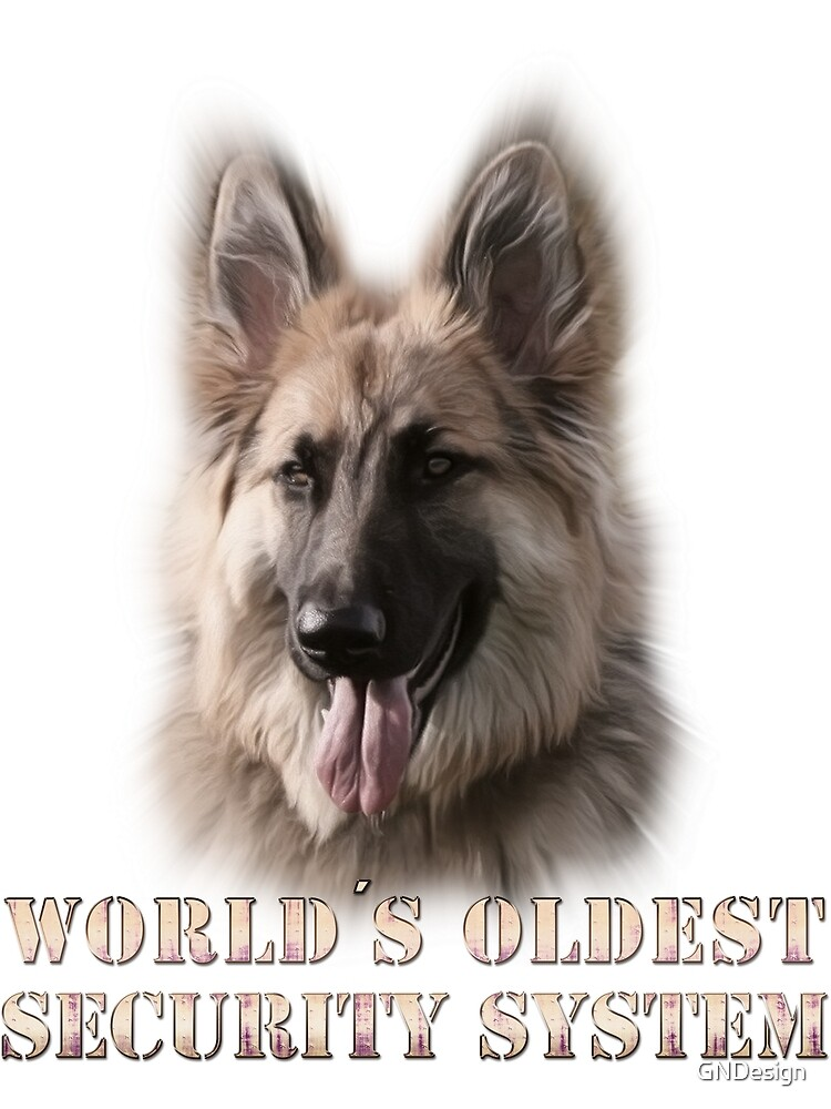 World's oldest security system by GNDesign