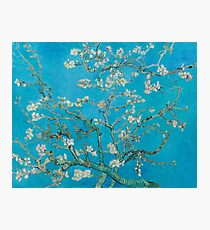 Vincent Van Gogh - Branches With Almond Blossom, 1890 Photographic Print