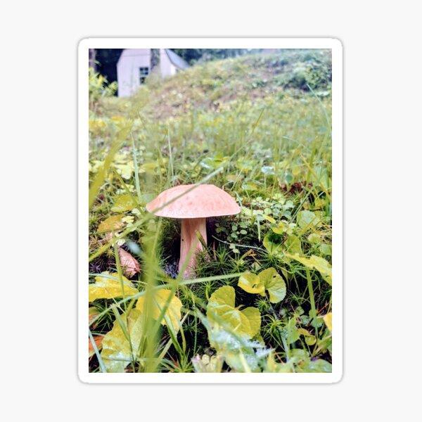 Mushroom II Sticker