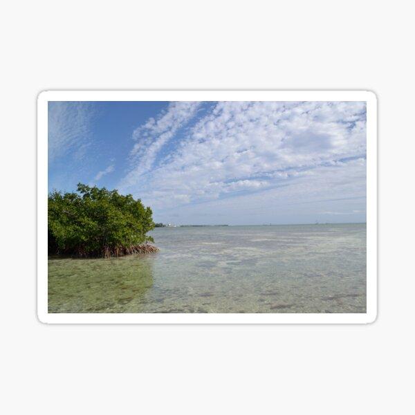 Key West Mangroves Sticker