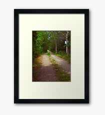 Vineyard Country Road Framed Print