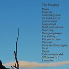 The Crossing by Digby