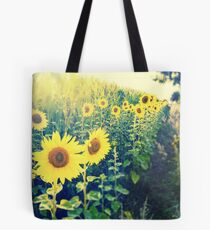 sunflowers at the cornfield Tote Bag
