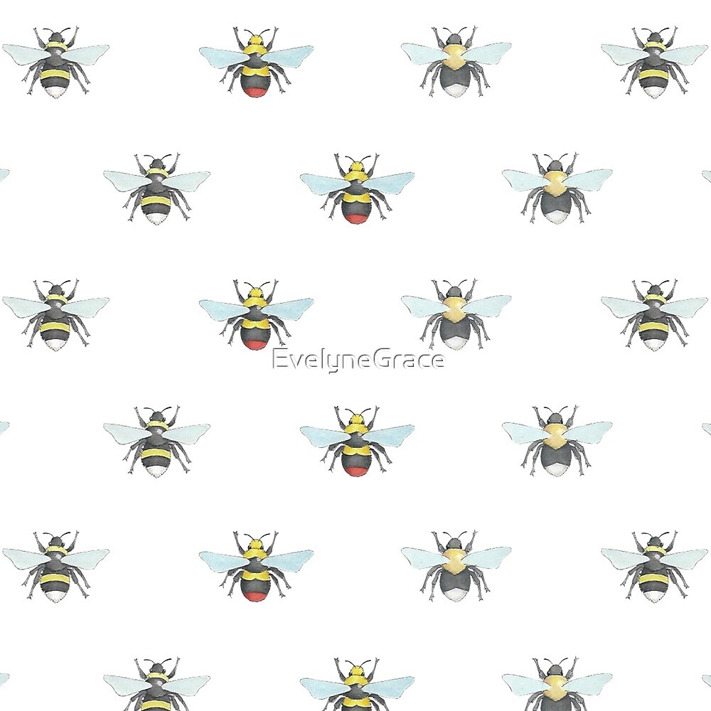 Various Bees by EvelyneGrace