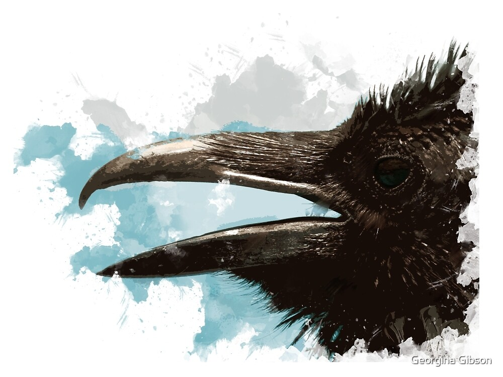 Grunge Raven by Georgina Gibson