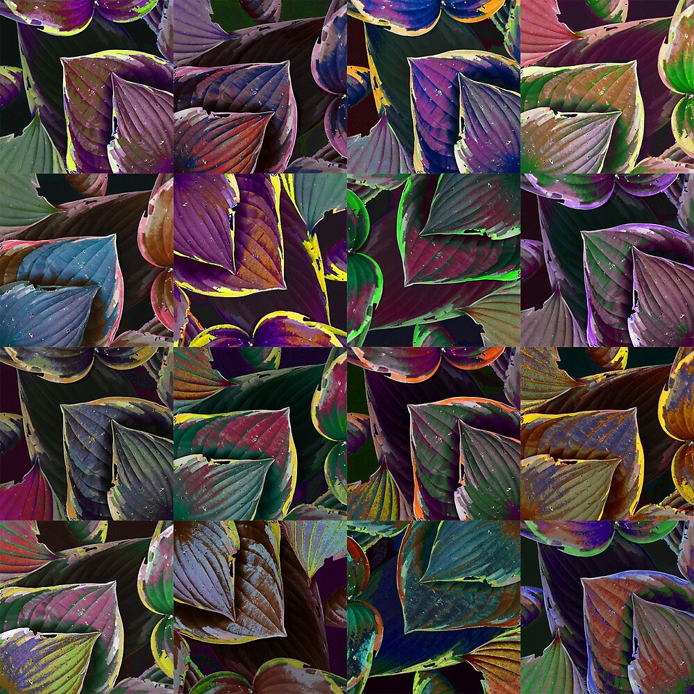 colored sheets by Audrey-Gerber