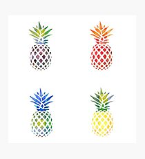 Colorful Pineapple Set Photographic Print