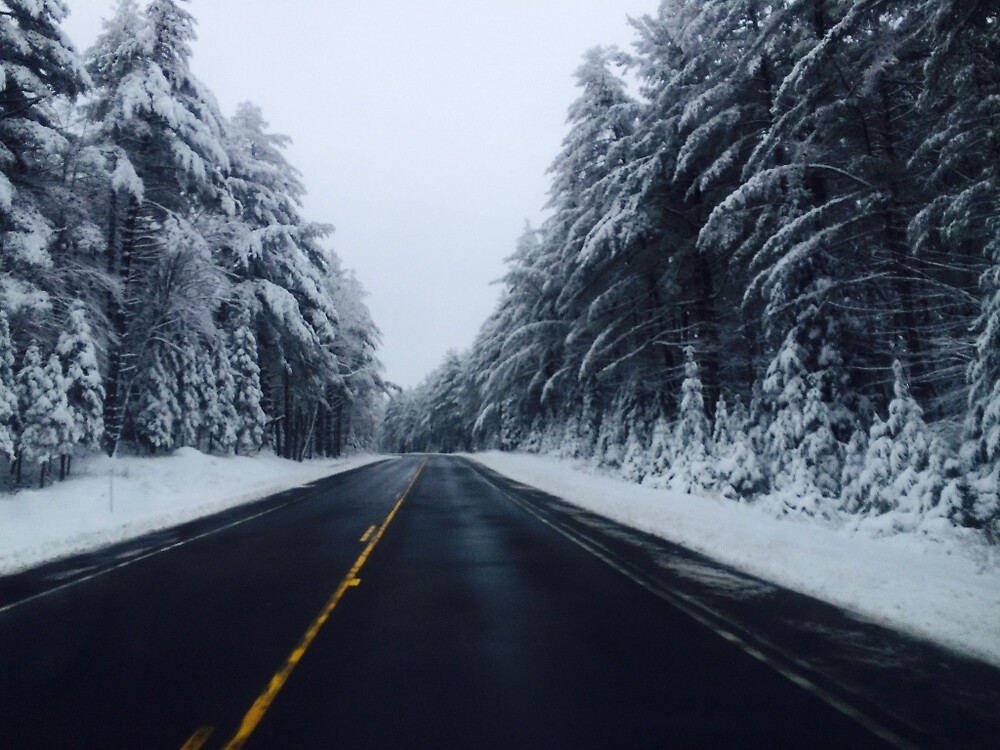 snowy drive by gracebaum