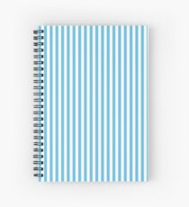 Sky Blue and White Stripes Pattern Spiral Notebook