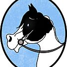 The Apollo - Black and White Paint Horse by JessDesigns