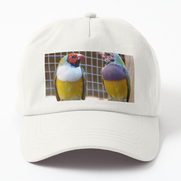 Gouldian Finches Dad Hat