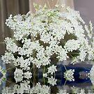 Queen Anne's Lace; Woodside Florist, Whittier, CA USA  by leih2008