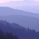 Smoky Mountains #02 by Leigh Ann Gagnon