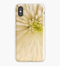 Floral Fun iPhone Case