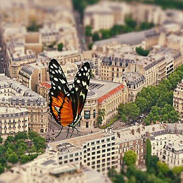 A Butterfly in Paris by TelestaiPix