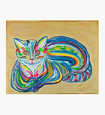 Rainbow Cat Photographic Print